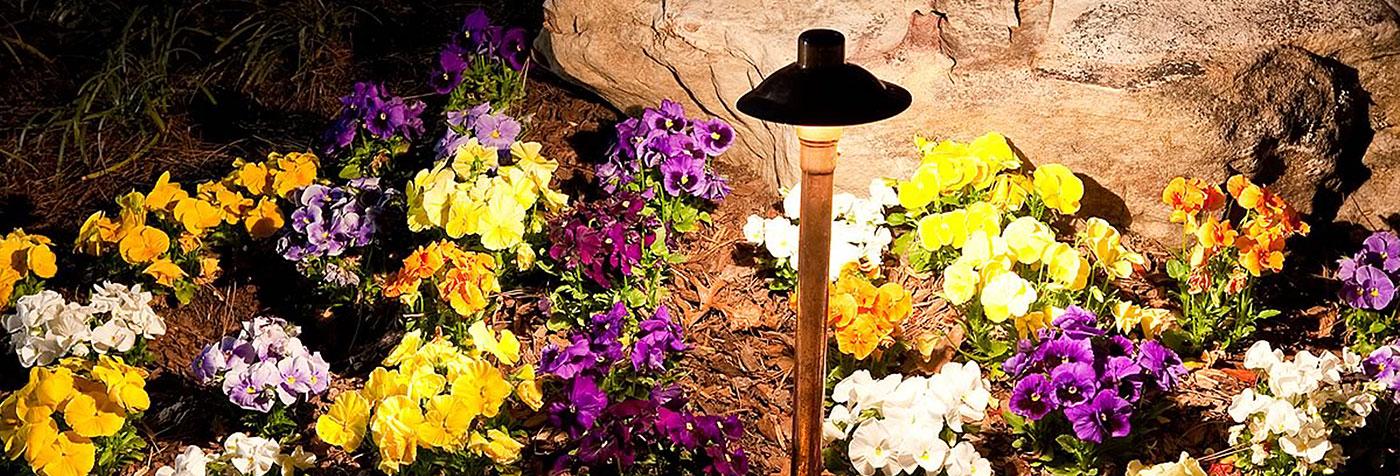Flower Lighting Header About Our Team | Naples Landscape Lighting