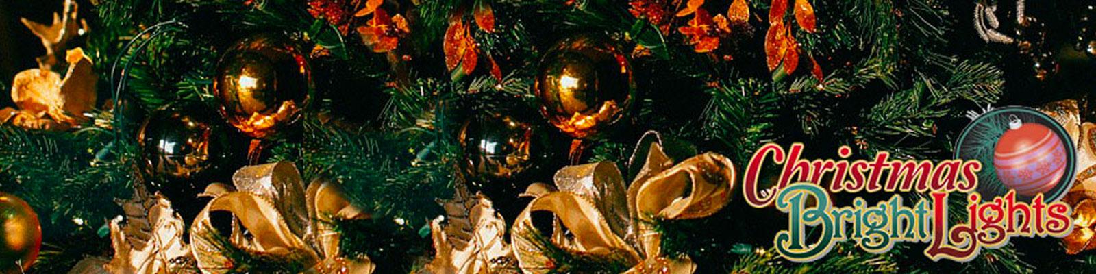 Commercial Christmas & Holiday Light Installation Naples, FL | Naples Landscape Lighting