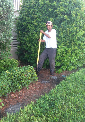 Our Crew on Marco Island | Naples Landscape Lighting